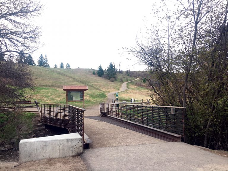 burke-park-bridge-2